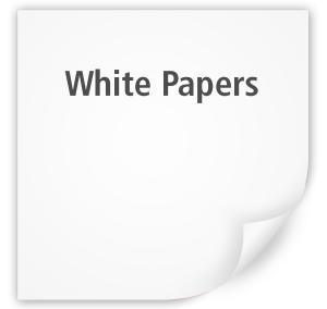 Paul Ramirez Writes White Papers